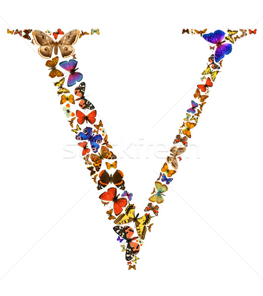 Сток-фото: бабочка · письме · шрифт · белый · природы · кадр