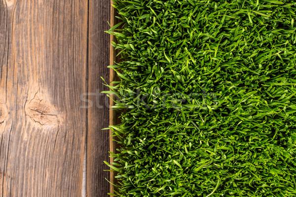 Green wheat grass  Stock photo © grafvision