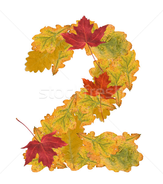 Number of autumn leaves . Number 2 Stock photo © grafvision