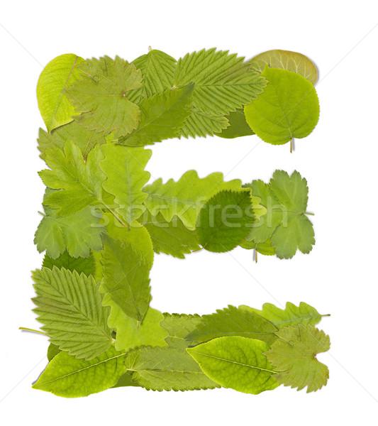 緑色の葉 手紙 フォント 白 ツリー ストックフォト © grafvision