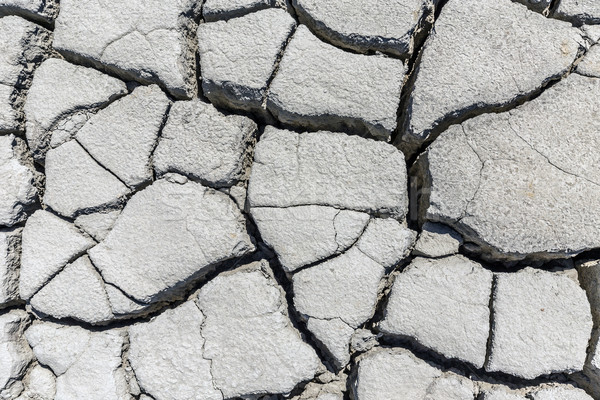 Soil drought cracked Stock photo © grafvision