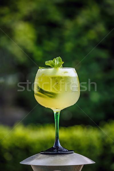 Fresh summer cold elderflower lemonade Stock photo © grafvision