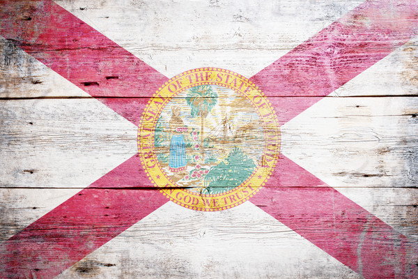 Flag of Florida Stock photo © grafvision