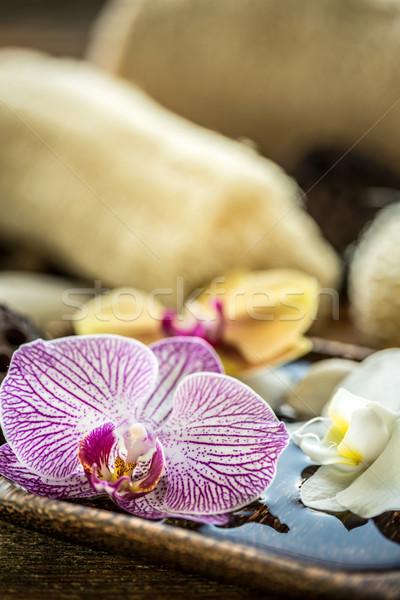 Viola orchidea fiore acqua scena tranquilla Foto d'archivio © grafvision
