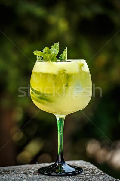 Holunder Limonade Kalk mint Wasser Obst Stock foto © grafvision