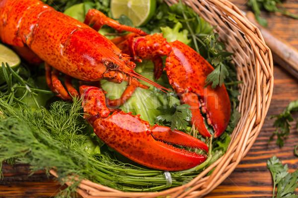 Lobster Stock photo © grafvision