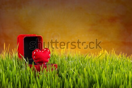 Red felt heart Stock photo © grafvision