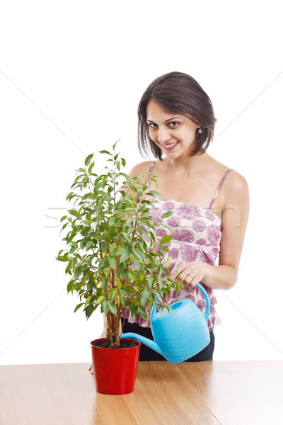Young woman irrigate plants Stock photo © grafvision
