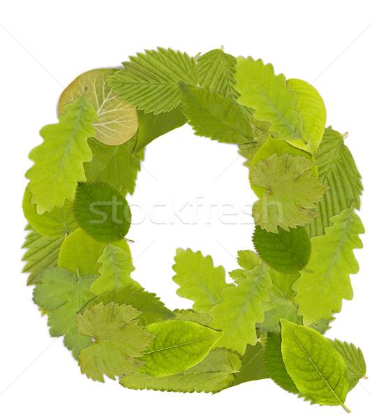 緑色の葉 手紙 フォント 白 文字q ツリー ストックフォト © grafvision
