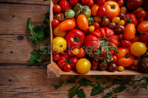Flat lay of colorful tomatoes Stock photo © grafvision