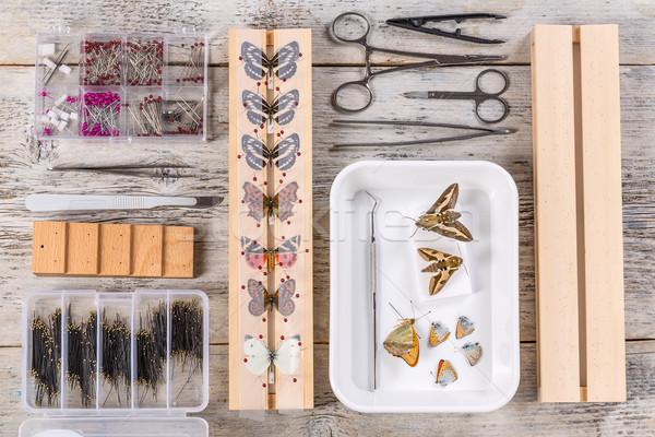 Vlinders tools gebruikt tool milieu antenne Stockfoto © grafvision
