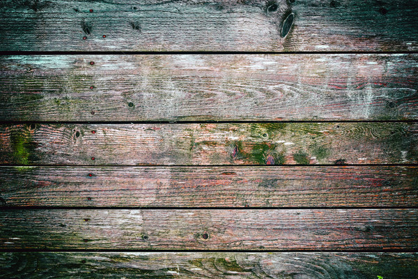 Wooden fence covered by moss Stock photo © grafvision