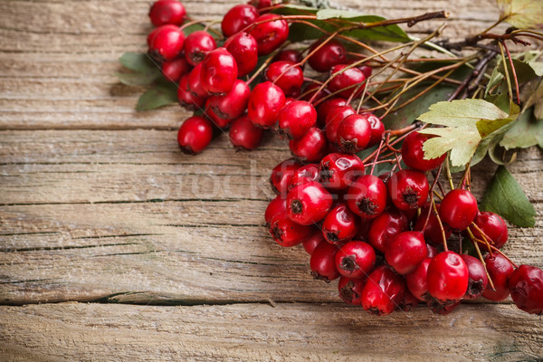 Frame made of hawthorn berries Stock photo © grafvision