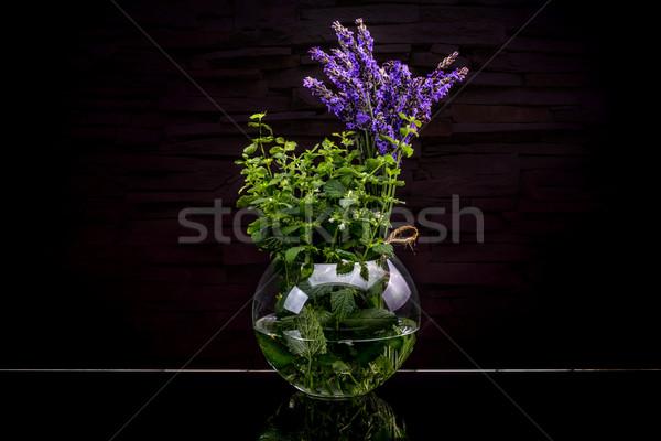 Fresh herbs from garden Stock photo © grafvision