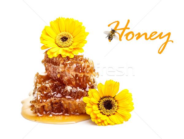 Jaune en nid d'abeille tranche miel alimentaire été Photo stock © grafvision