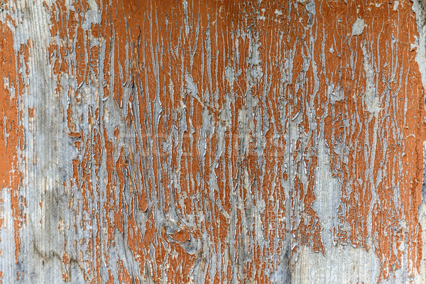 Peeling paint on an old planks Stock photo © grafvision