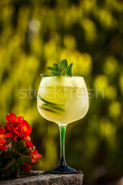Refreshing summer non-alcoholic cocktail Stock photo © grafvision