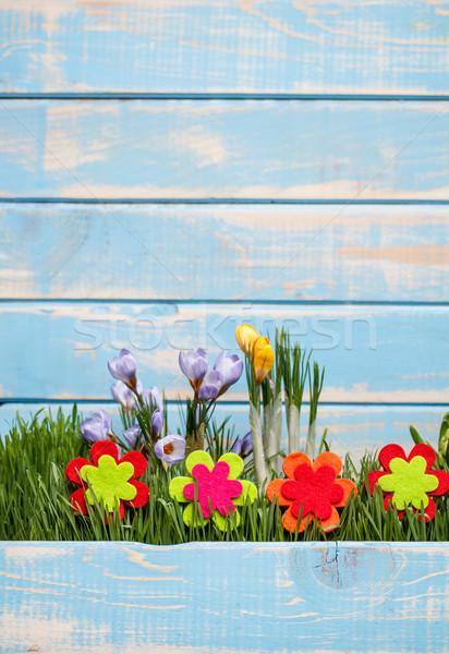 Spring time Stock photo © grafvision
