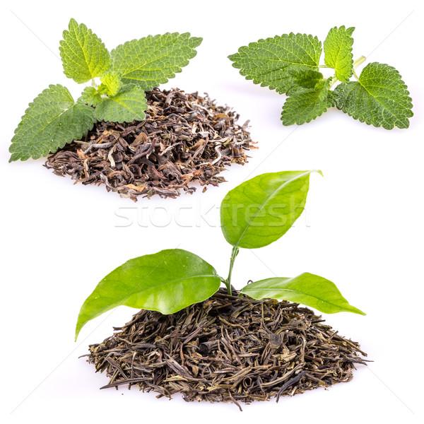 Tea citrom balzsam levelek köteg száraz Stock fotó © grafvision