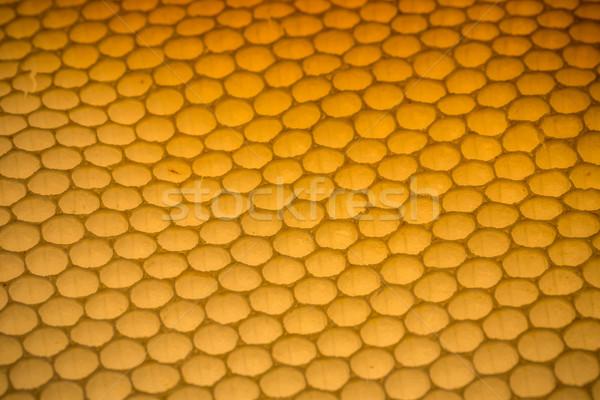Honingraat lege natuur achtergrond patroon Stockfoto © grafvision