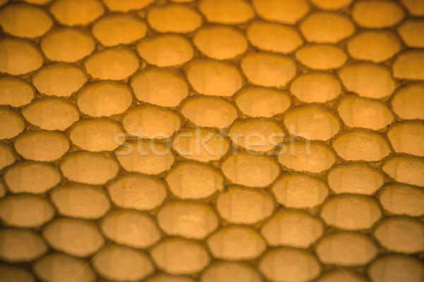 En nid d'abeille modèle naturelles texture abeille horizons Photo stock © grafvision