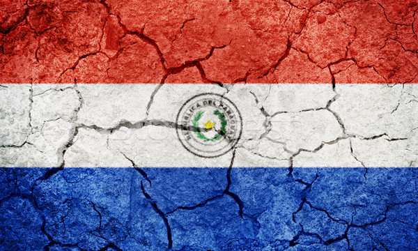 Republic of Paraguay flag Stock photo © grafvision