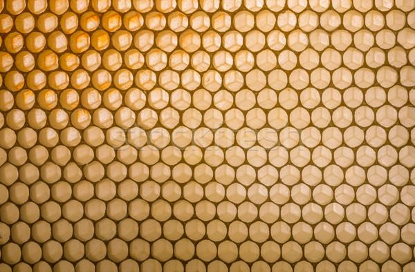 Pusty plaster miodu charakter tle wzór Zdjęcia stock © grafvision