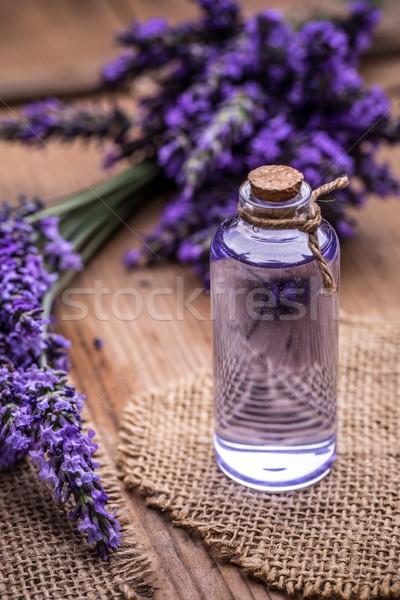 Fresco lavanda flores saúde Óleo Foto stock © grafvision