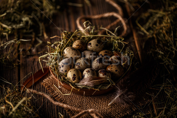 卵 乾草 巣 木製 背景 ヴィンテージ ストックフォト © grafvision