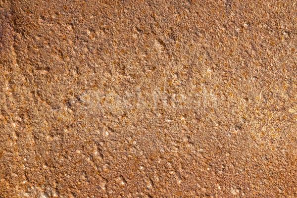 Plastered concrete wall  Stock photo © grafvision