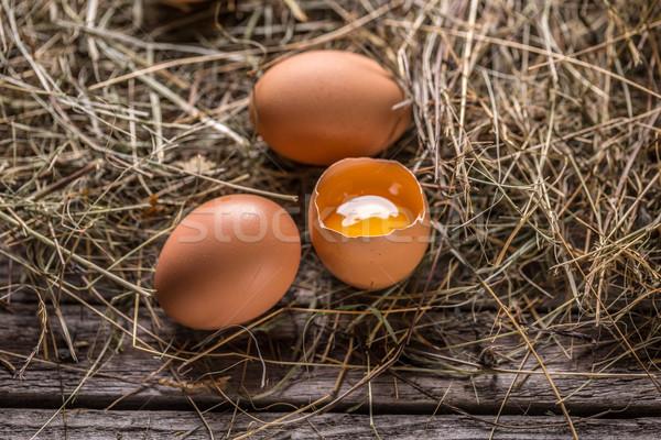 Braun Eier rustikal Stil Bauernhof Nest Stock foto © grafvision