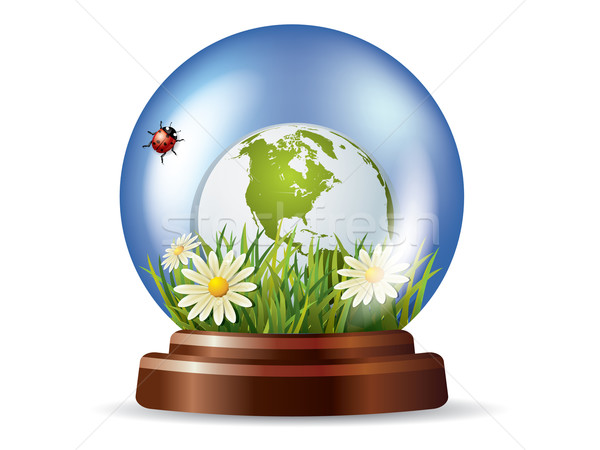 Glass globe with nature inside Stock photo © graphit