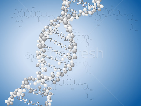 DNA spiral - molecules background Stock photo © graphit