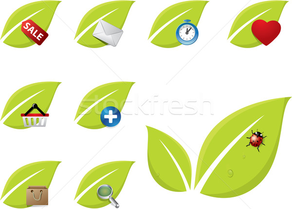 Green leaf icon set Stock photo © graphit