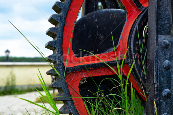Gears in grass Stock photo © graphit