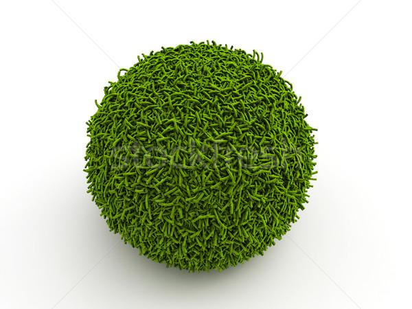 Fű gömb 3D illusztráció földgömb Stock fotó © grasycho