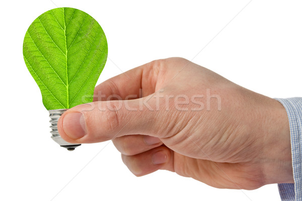 Hand eco groene energie gloeilamp geïsoleerd witte Stockfoto © Grazvydas