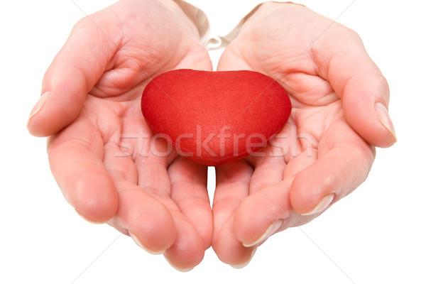 Kadın kırmızı kalp eller yalıtılmış Stok fotoğraf © Grazvydas