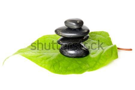 black stones on the leaf Stock photo © Grazvydas