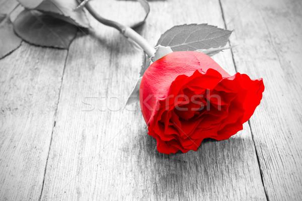 закрывается красную розу старые цветок красный Сток-фото © Grazvydas