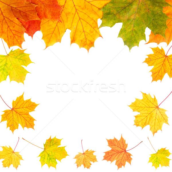 Autumn border card of colored leaves Stock photo © Grazvydas