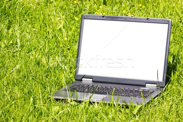 Laptop grama tela internet teia verde Foto stock © Grazvydas