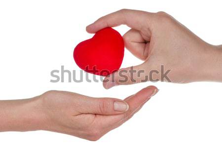 Männlich weiblichen Hände Herz isoliert weiß Stock foto © Grazvydas