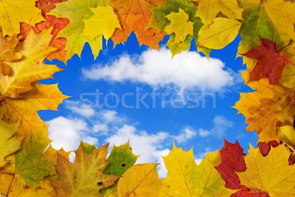 Foto stock: Blue · sky · colorido · céu · nuvens · natureza