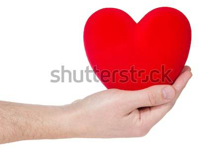 Stock photo: Health insurance or love concept