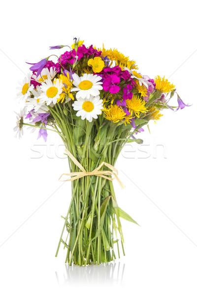 красивой букет Полевые цветы ярко белый природы Сток-фото © Grazvydas