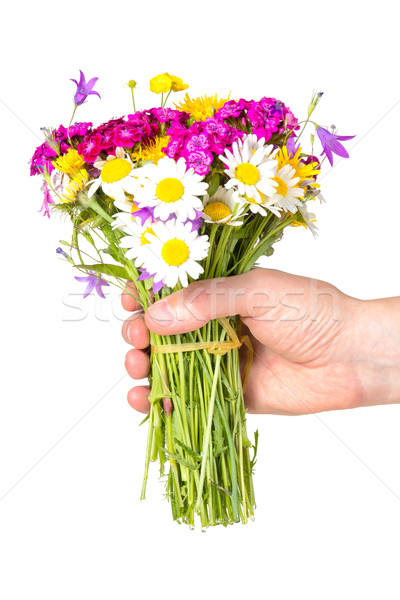 Hand giving bouquet of wildflowers Stock photo © Grazvydas