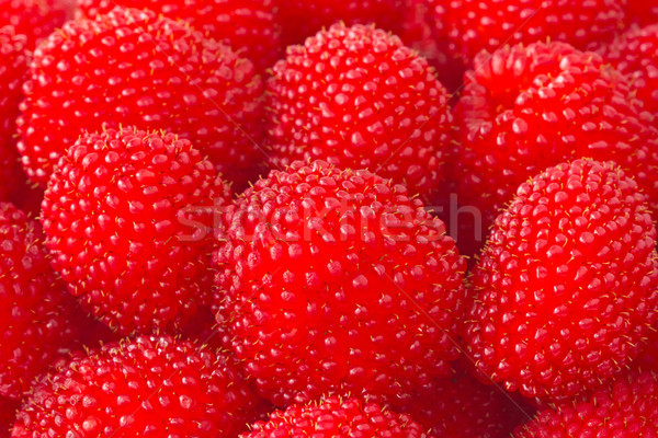 freshly picked ripe red raspberries Stock photo © Grazvydas