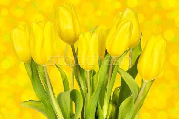 Tulipanes amarillo ramo color Foto stock © Grazvydas