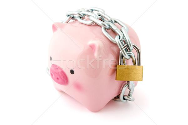 вверх заблокированный финансовых защиту другой Сток-фото © Grazvydas